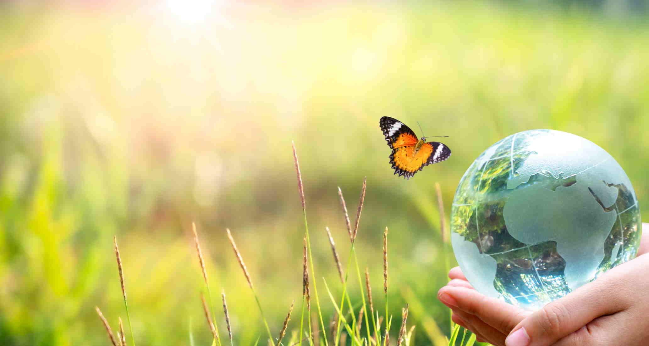 SAR Sustainability
